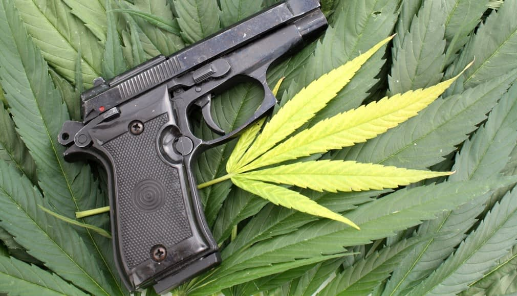 """Featured image for """"Medical Marijuana And Concealed Carry 