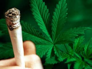 marijuana charges reduced